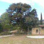 La Castellassa de Can Torres